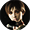 (26 Сентябрь 2017 - 19:55) Советник BSAA  - Организация Стенда Resident Evil на Поларконе-2017